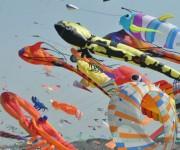 2010 metais festivalis Cervijoje vyks 30-tą kartą